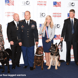 Military Dogs Honored