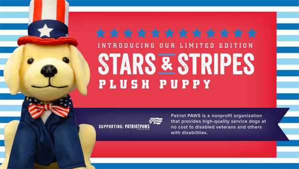 Picture of plush puppy with patriotic outfit including stars and stripes