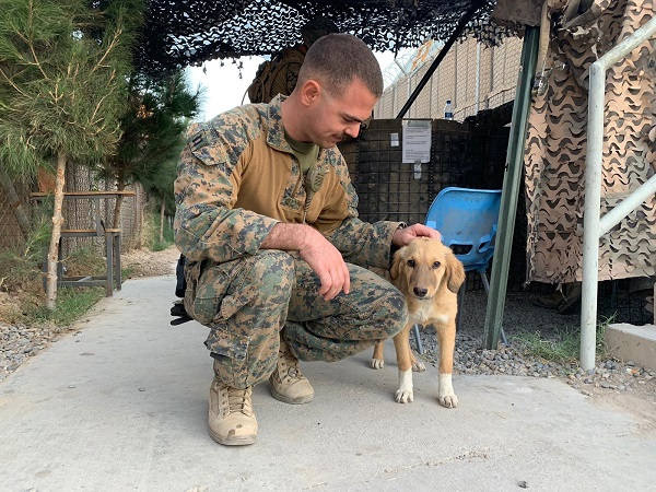 Marine sits near his rescue puppy in Afghanistan